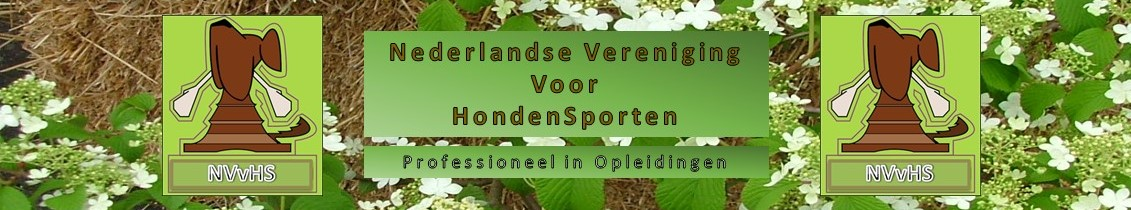 NVvHS.nl